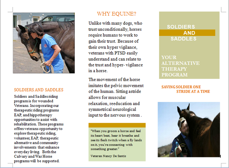 Stable Movements Soldiers and Saddles Program